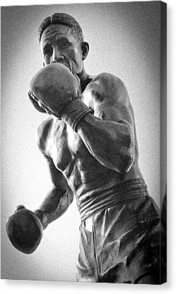 The Boxer Canvas Print by Bob Caddick