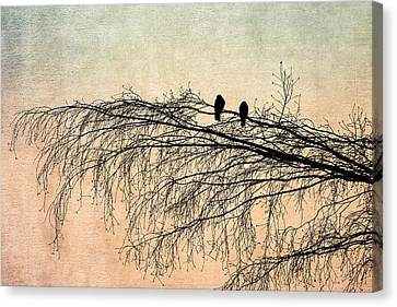 The Branch Of Reconciliation 2 Canvas Print by Alexander Senin