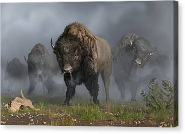 The Buffalo Vanguard Canvas Print by Daniel Eskridge