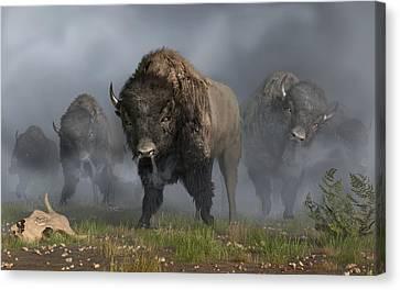 The Buffalo Vanguard Canvas Print by Daniel Eskridge