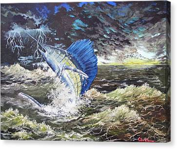 The Calm The Crazy The Sailfish Canvas Print by Kevin F Heuman