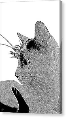 The Cat Canvas Print by Ben and Raisa Gertsberg