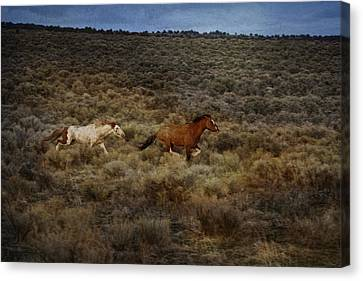 The Chase Is On D1215 Canvas Print by Wes and Dotty Weber