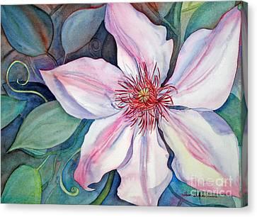 The Clematis Canvas Print by Shirin Shahram Badie