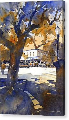 The College Street Oak Canvas Print by Iain Stewart