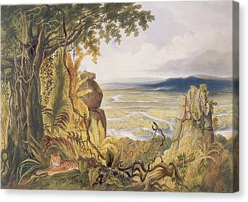 The Comuti Or Taquiare Rock Canvas Print by Charles Bentley