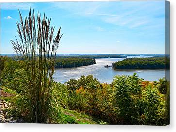 The Confluence  Canvas Print by Julie Dant