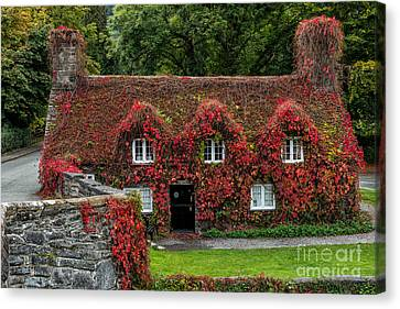 The Cottage Canvas Print by Adrian Evans