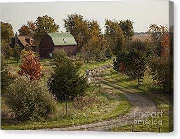 The Country Farm Canvas Print by Timothy Johnson