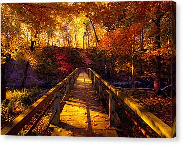 The Crossing Canvas Print by Phil Koch