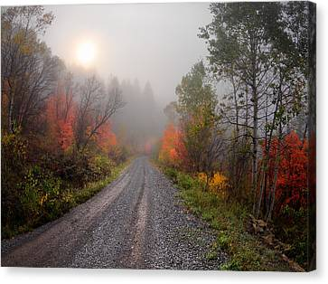 The Dirt Road Canvas Print by Leland D Howard