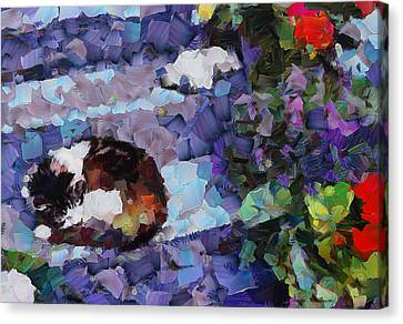 The Dreaming Kitten Canvas Print by Yury Malkov