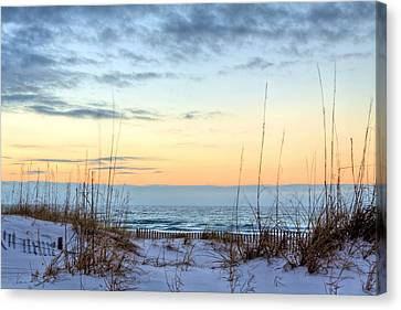 The Dunes Of Pc Beach Canvas Print by JC Findley