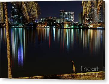 The Egrets View Canvas Print by Rene Triay Photography