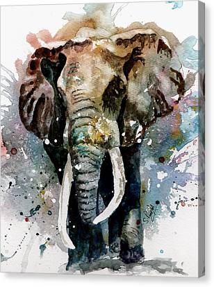 The Elephant Canvas Print by Steven Ponsford