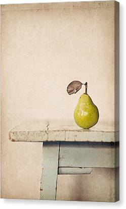 The Exhibitionist Canvas Print by Amy Weiss