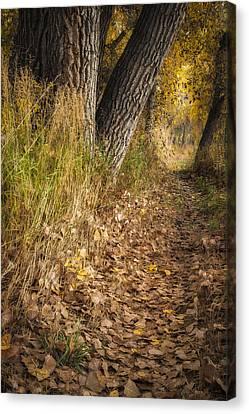 The Fall Way Home Canvas Print by Michael Van Beber