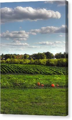 The Farm Canvas Print by Joann Vitali