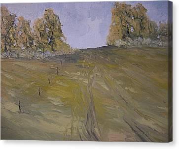 The Fence Row Canvas Print by Dwayne Gresham