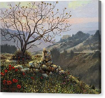 The Fig Tree   Mt Carmel Canvas Print by Graham Braddock