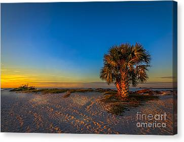 The Final Moments Canvas Print by Marvin Spates