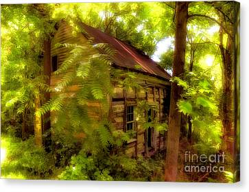 The Fixer-upper Canvas Print by Lois Bryan