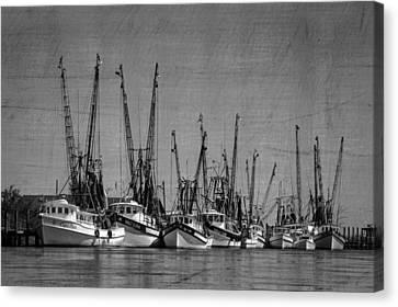 The Fleet Canvas Print by Debra and Dave Vanderlaan