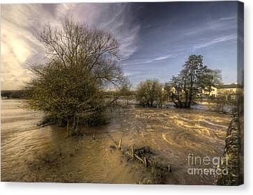 The Floods At Stoke Canon  Canvas Print by Rob Hawkins