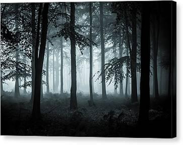 The Fog Canvas Print by Ian Hufton