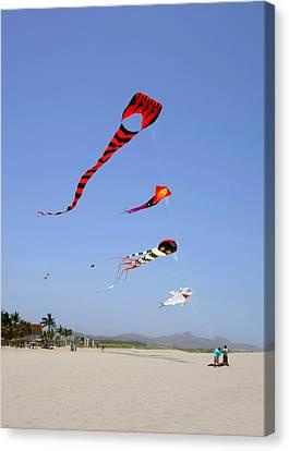 The Forgotten Joy Of Soaring Kites Canvas Print by Christine Till