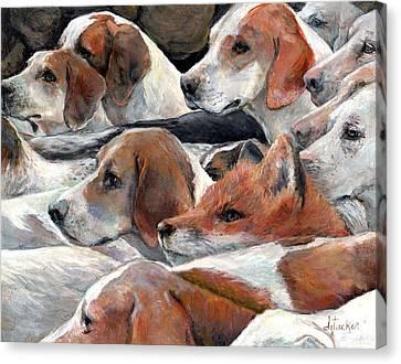 Fox Play Canvas Print by Donna Tucker