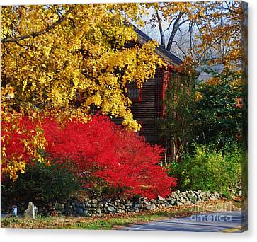 The Glory Of Fall 2 Canvas Print by Marcus Dagan