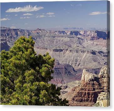 The Grand Canyon Canvas Print by Marianne Campolongo