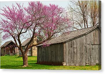The Gray Campbell Farmstead Canvas Print by Lena Wilhite