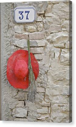 The Hanging Red Hat Canvas Print by David Letts