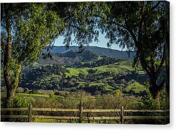 The Hills Canvas Print by Ernie Echols