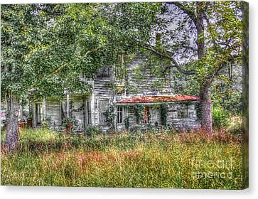 The House In The Woods Canvas Print by Dan Stone