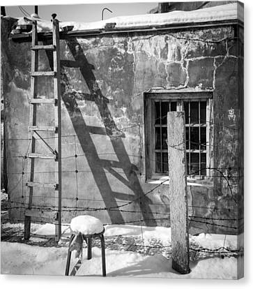 The Ladder Canvas Print by Stephanus Le Roux