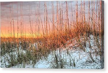 The Last Rays Canvas Print by JC Findley