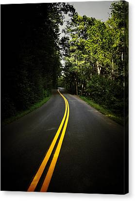 The Long And Winding Road Canvas Print by Natasha Marco