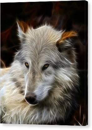 The Look Canvas Print by Steve McKinzie