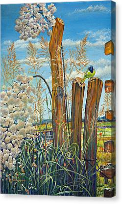 The Lookout Texas Green Jay Canvas Print by Mary Dove
