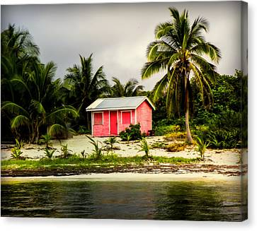 The Love Shack Canvas Print by Karen Wiles