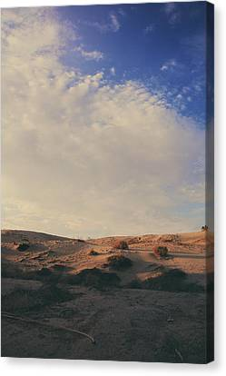 The Miles Between Us Canvas Print by Laurie Search