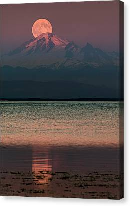 The Moon Over Mount Baker Canvas Print by Alexis Birkill