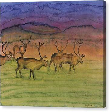The Mystery Of Migration Canvas Print by Carolyn Doe
