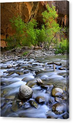 The Narrows A Place To Pause Canvas Print by Bob Christopher