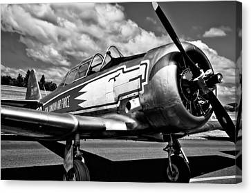 The North American T-6 Texan Canvas Print by David Patterson