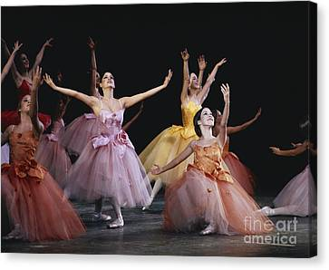 The Nutcracker Ballet Performance Canvas Print by James L. Amos