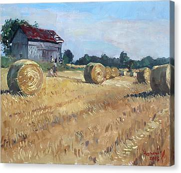 The Old Barns In Georgetown On Canvas Print by Ylli Haruni